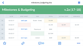Budgeting Excel sheet preview